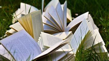 Aufgeschlagene Bücher auf einer Wiese