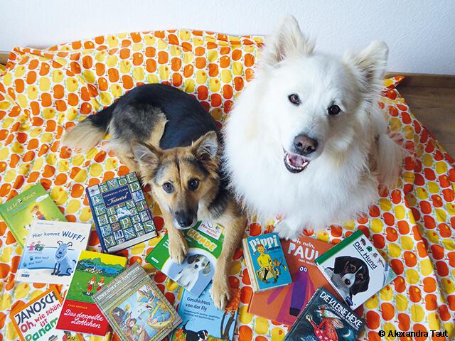 Die Hunde Bambam und Fluffy sitzen auf einer Bettdecke und schauen interessiert nach oben. Sie sind umgeben von schönen Kinderbüchern.